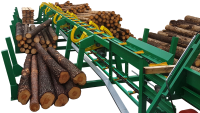 Double-sided sorting of logs